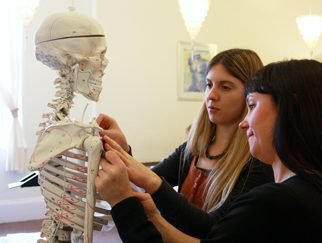 CPD massage workshops: Bringing anatomy to life